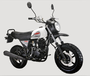 Мотоцикл Lifan LF100 C